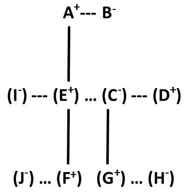 Blood Relation Tree (Part - 3) (Practice Exercise 4)