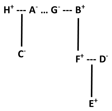 Blood Relation Diagram (Practice Exercise 3)